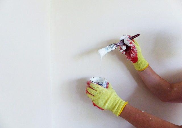 Toutes les démarches pour peindre un mur
